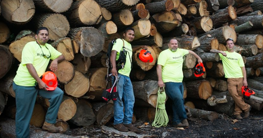 An IFPG Consultant Brings Three New Monster Tree Franchises to Grand Rapids