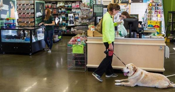 The Pet Supplies Plus Franchise is Coming to Phoenix, Arizona!