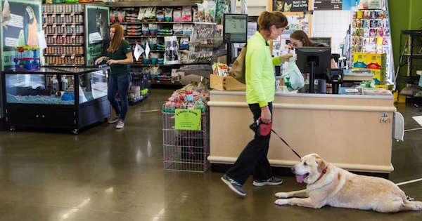 Pet Supplies Plus Franchise Closes a Deal in Texas when an IFPG Consultant